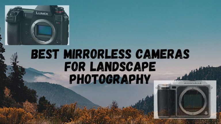 5 Best Mirrorless Cameras for Landscape Photography