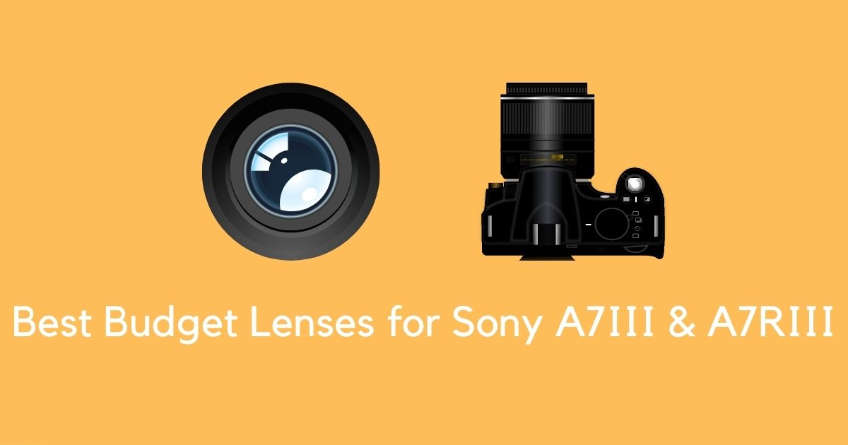 Best Budget Lens for Sony A7III & A7RIII