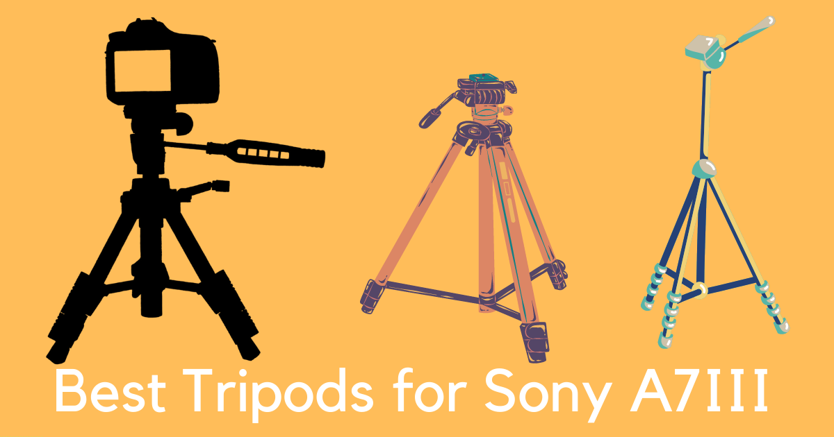 Best Tripods for Sony A7III