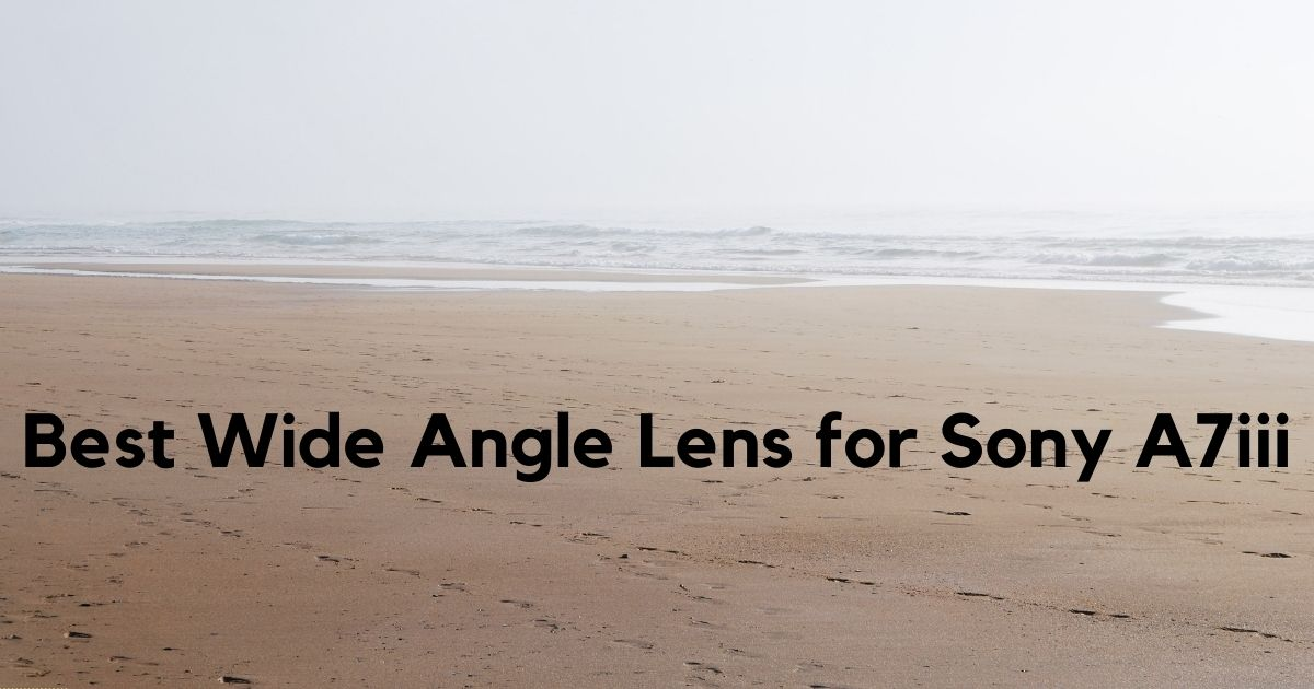 Best Wide Angle Lens for Sony A7iii